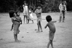 Amazonas 1984